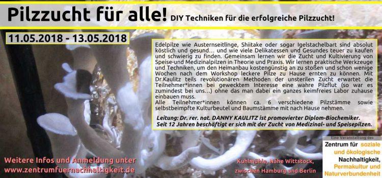 Pilze satt….Pilzzuchtworkshop 2018