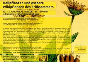 flyer heilpflanzenseminar _web